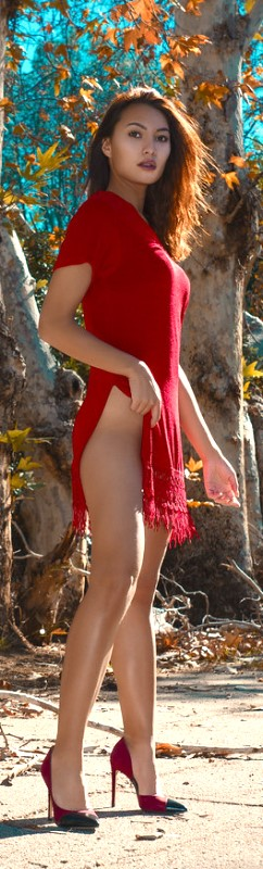 Escorts service provider in Central Silk Board