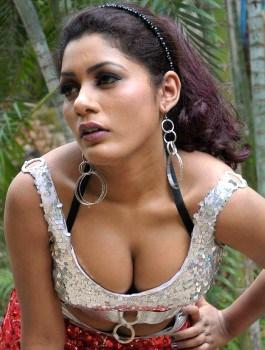 Call Girl in Rajajinagar - Evanika
